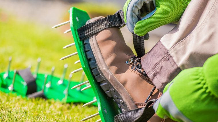 Spiked shoes to aerate lawn